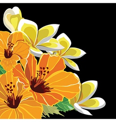 Beautiful floral pattern hand-drawing vector image