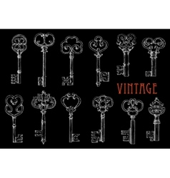 Chalk sketched skeleton keys on blackboard vector image vector image