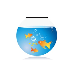Goldfish bow with bubbles vector image
