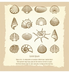 Vintage notebook page with sea shells vector