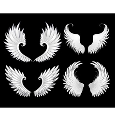 Set of White Wings vector image