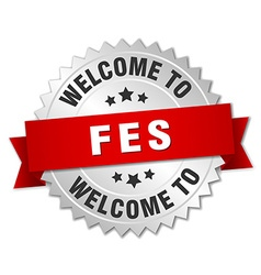 Fes 3d silver badge with red ribbon vector