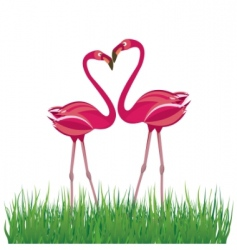 flamingo in love vector image vector image