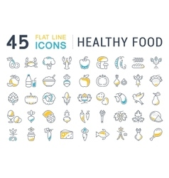Set flat line icons healthy food vector