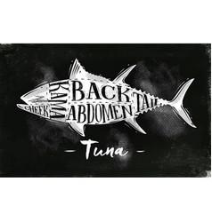 tuna cutting scheme chalk vector image
