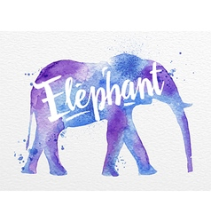 Painted animals elephant vector