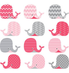 Pink and Grey Cute Whale Collections vector image