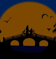 Asia at night landscape with lovers on the bridge vector image vector image