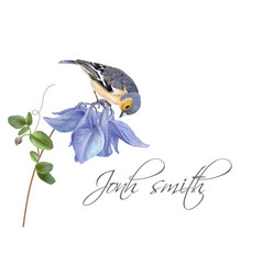 blue flower bird name card vector image