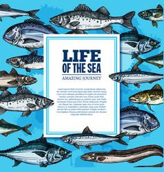 Fishes sketch poster sea life ocean fish vector