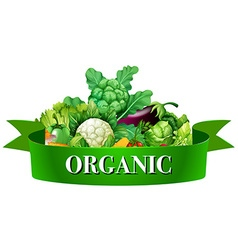 Fresh vegetables with banner vector image