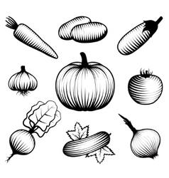 Monochromatic vegetables set vector