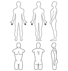 Male mannequin outlined torso vector