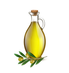 Realistic Jug Pitcher of olive oil and branch vector image