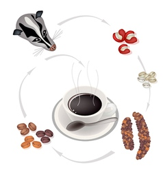 Smoking hot coffee with civet coffee beans vector