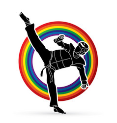 taekwondo kick action with guard equipment vector image