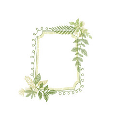 Frame with greenery plant leaves decoration vector