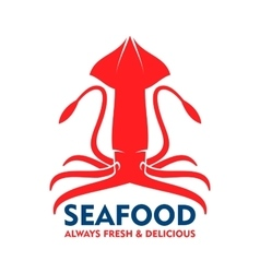Fresh marine red squid for seafood design vector
