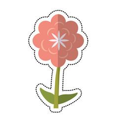 Cartoon canna flower decoration vector