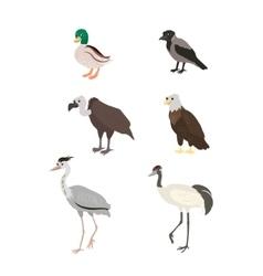 Cartoon set duck crow buzzard eagle crane heron vector