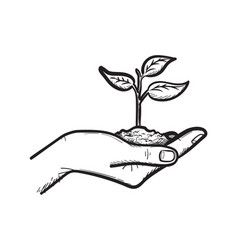 Human hand with sprout hand drawn sketch icon vector