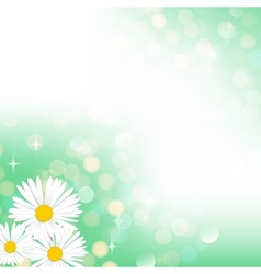 Spring green bokeh background vector image vector image
