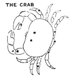 The crab vintage vector