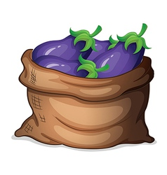 A sack of eggplants vector