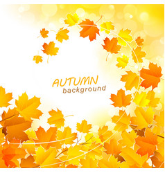 Autumn leaf fall background vector