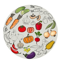 Vegetable vector