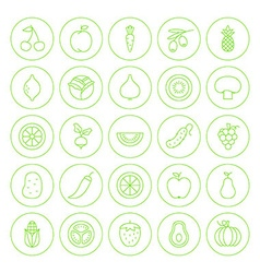 Line circle fresh fruit vegetable icons set vector