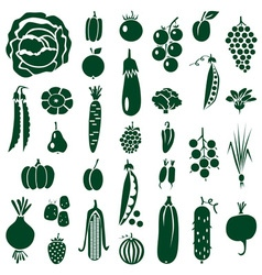 Fruit and vegetables icons on white vector