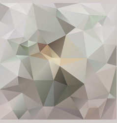 abstract irregular polygon background vector image vector image