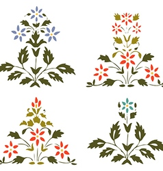 Set blooming plant with flowers and leaf on white vector image vector image
