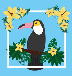 toucan sitting on tree branch flower tropical bird vector image