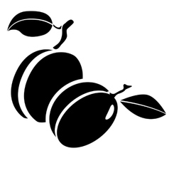 plums berries and leaves vector image