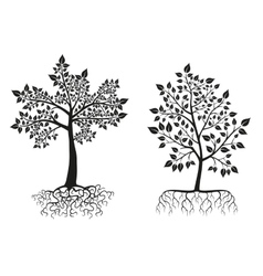 Black trees and roots silhouettes with leaves vector image