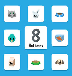 flat icon animal set of kitty bunny sparrow and vector image vector image
