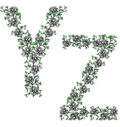 hand drawing ornamental alphabet letter yz vector image