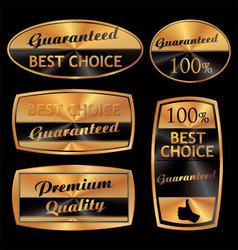 Best choice golden set vector