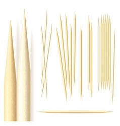 toothpicks vector image