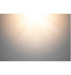 Golden glowing light burst explosion on vector