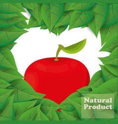 Apple natural product leaves shape heart vector