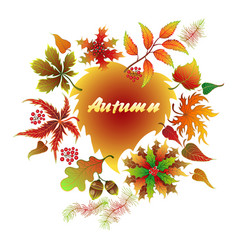 autumn typographic fall leaf vector image