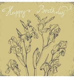 Happy birthday card with bunch of irises vector