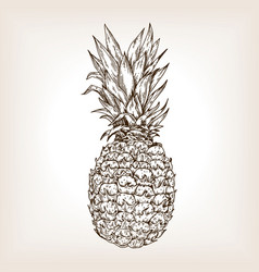 pineapple engraving vector image vector image