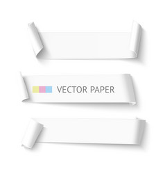 Set of horizontal blank white curved paper ribbon vector