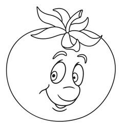 fresh tomato cartoon vector image