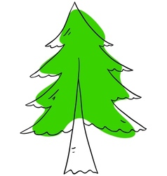 Fir tree vector image