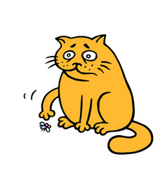 orange fat cat is lonely a dead fly on the floor vector image